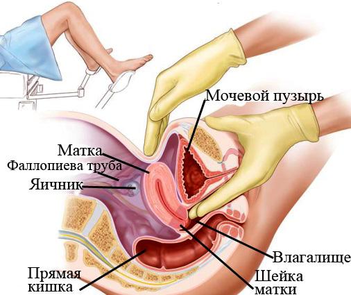 Домашнее порно и секс фото голых девушек женщин и бывших жен.