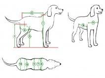 Коляски для собак инвалидов своими руками
