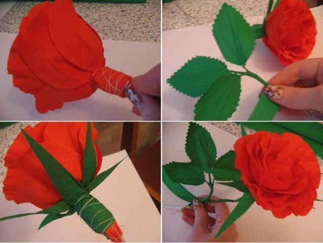 Большая розы из гофрированной бумаги пошагово