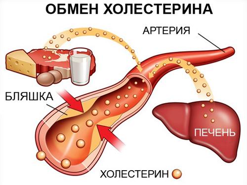травница тартак как понизить холестирин