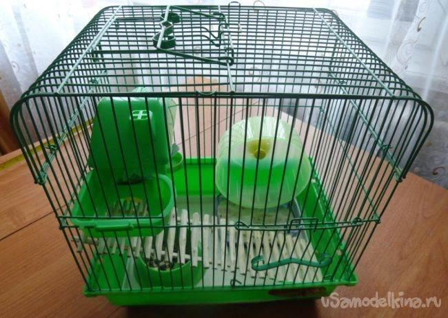 Клетка для джунгарского хомяка своими руками в домашних условиях 77