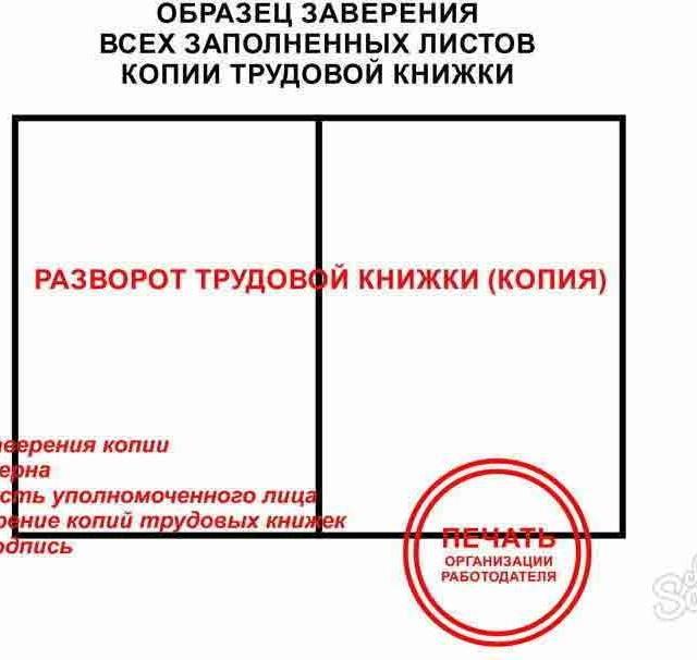 Инструкция как заверить копию трудовой книжки и образцы документов для разных целей