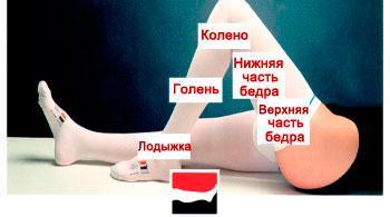 По какой вене течет артериальная кровь