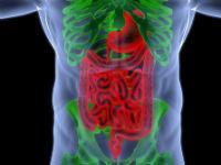 Основные признаки и симптомы желудочного кровотечения - My Life